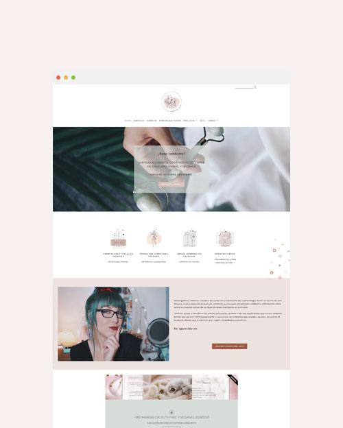 proyecto-web-asami